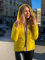 Женская короткая  куртка весна-осень