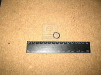 Кольцо уплотнительное ТНВД БЕЛАЗ ( ЯзРТИ), 240Н-1011449