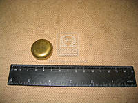 Заглушка головки блока цилиндров МАЗ ( ЯМЗ), 313934-П