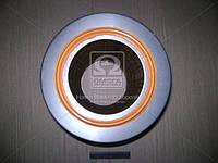 Элемент фильтрующий возд. МАЗ с п/ф (EFV225) (пр-во Цитрон), 238Н-1109080