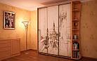 Шкаф купе 04 2400х450х2400 Алекса мебель, фото 10