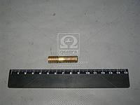 Шпилька М10х25 ОСТ 37.001 ( МАЗ), 373164