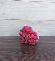 Гіпсове кашпо у формі серця з рожевим мохом.