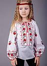Детская вышиванка длинный рукав, фото 4