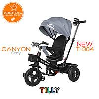 TILLY CANYON T-384 трехколесный велосипед с родительской ручкой Серый