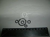 Ремкомплект датчика блокировки диф. 70-4801010 с арматурой ( Украина), Ремкомплект-1924