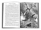 Вогонь і кров. За триста років до «Гри престолів» (Історія Таргарієнів), фото 3