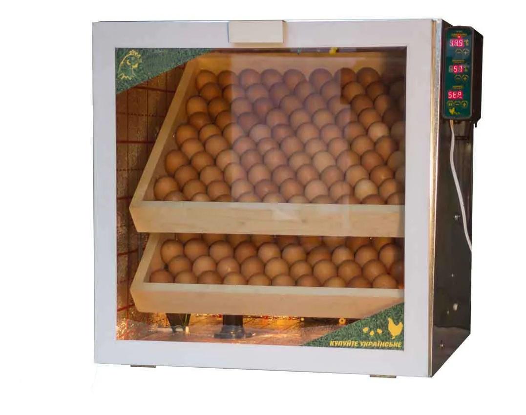 Инкубатор с автоматическим переворотом и поддержанием влажности на куриных 200 яиц