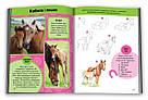 Вчимося малювати коней, фото 2