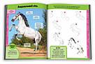 Вчимося малювати коней, фото 3