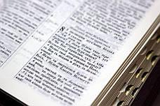 Біблія українською мовою (червоно-коричнева), фото 2