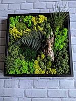 Картины из стабилизированного мха и стабилизированных растений, фото 1