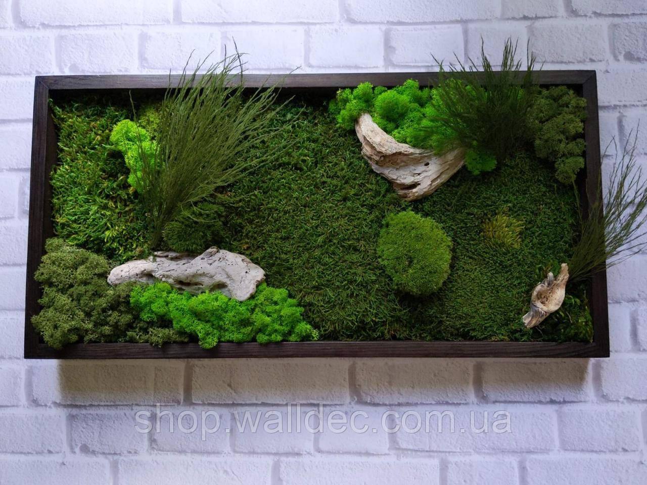 Картина из стабилизированного мха и стабилизированных растений
