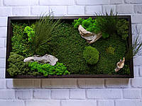 Картина из стабилизированного мха и стабилизированных растений, фото 1