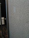 Шкаф-купе раздвижная аракаловая пленка. Шкафы-купе на заказ Днепр., фото 2