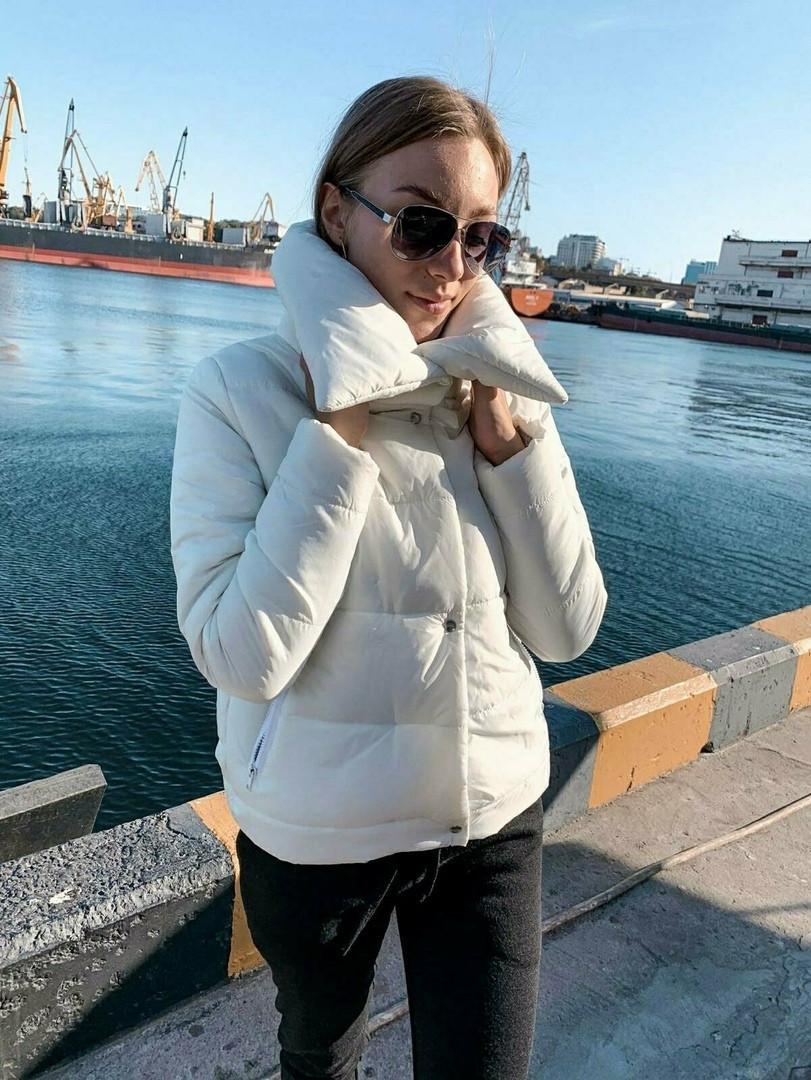 Теплая короткая женская куртка с высоким воротником (4расцв) 42,44,46р.