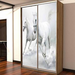 Шкаф купе 01 1000х600х2200 Алекса мебель
