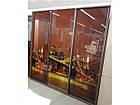 Шкаф купе 05 2400х450х2200 Алекса мебель, фото 9
