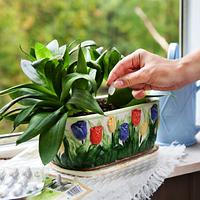 Удобрения для комнатных растений и цветов