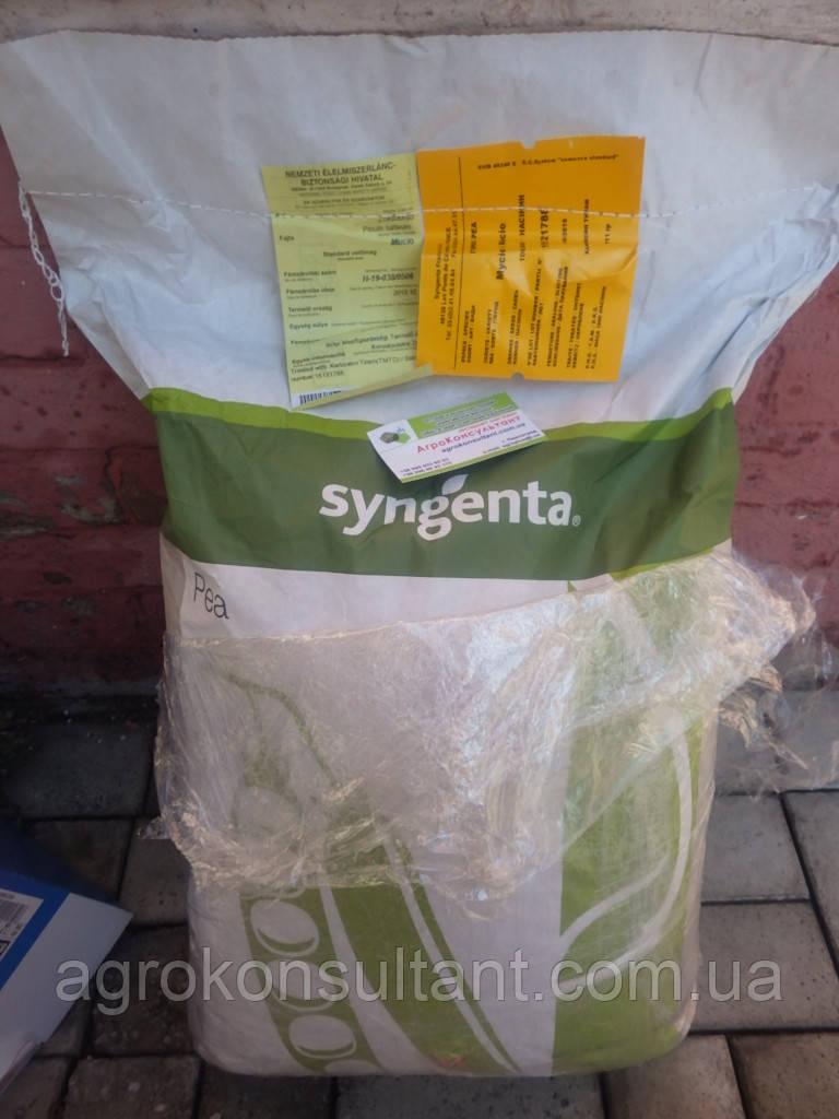 Семена гороха Муцио (Syngenta) 100000 семян / 100 тыс сем — среднеспелый (65-66 дней), овощной
