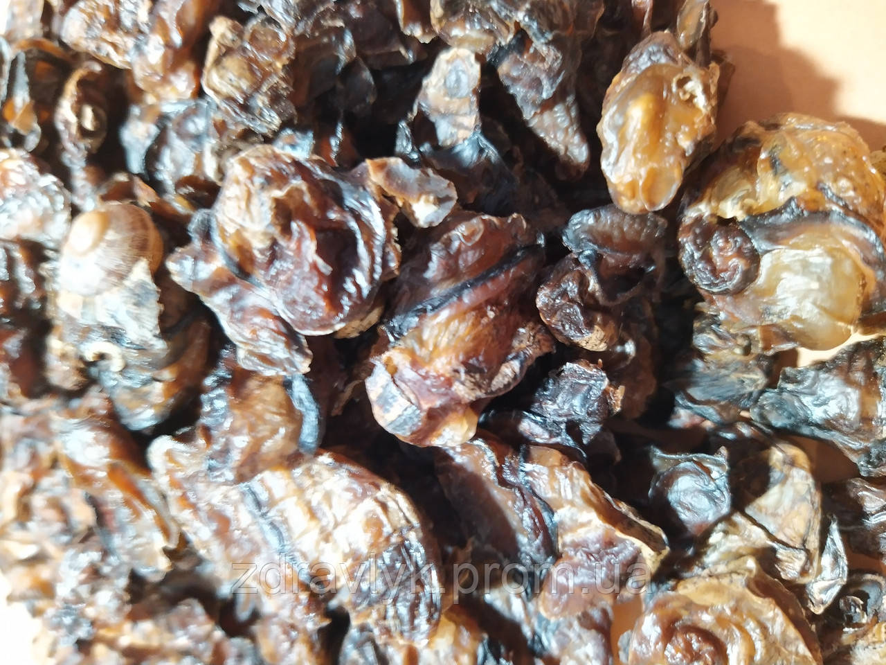 Dried snail meat