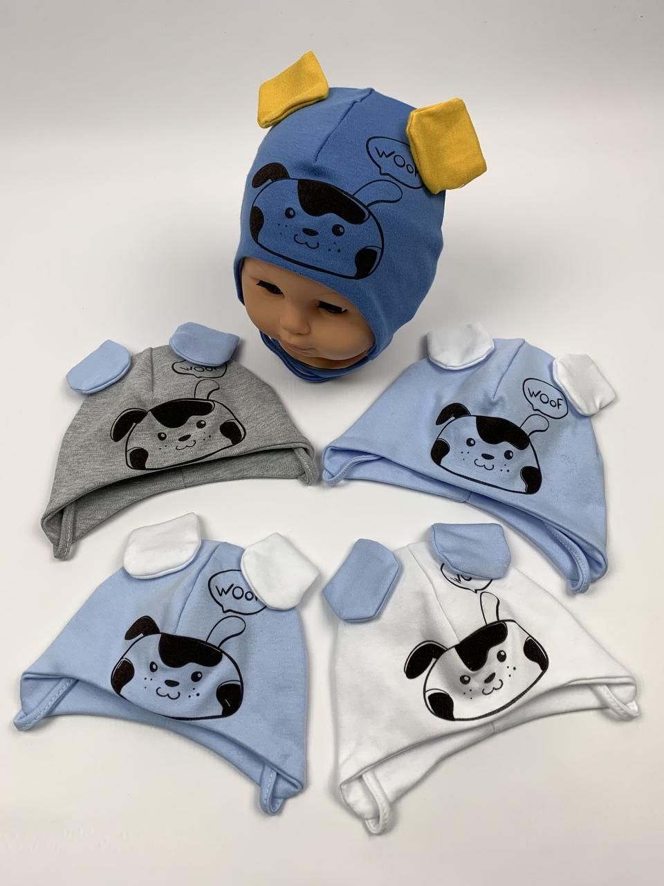 Детские польские демисезонные трикотажные шапки на завязках для мальчиков оптом, р.38-40 42-44, Ala Baby ab166