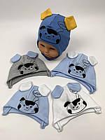 Детские польские демисезонные трикотажные шапки на завязках для мальчиков оптом, р.38-40 42-44, Ala Baby ab166, фото 1