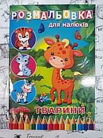 Раскраска детская А4 для девочек , для мальчиков  80 стр. (микс )  924760
