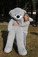 Огромный плюшевый мишка Нестор 220 см.Мягкая игрушка.игрушка медведь.мягкие игрушки украина Серый