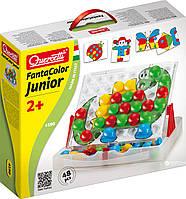 Quercetti Fantacolor Junior Basic (4195) Мозаика набор Big 48 (4195-Q)
