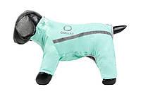 Комбинезон зимний Д 406 №8 для породы собак пекинес Collar Теремок, 178913 ментоловый, 52*35 см