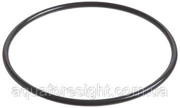 Уплотнительное кольцо фильтра Pentek для корпусов Slim Line 1/2 корпусов