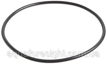 Уплотнительное кольцо фильтра Pentek для корпусов Slim Line 3/4 корпусов