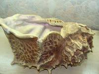 Керамическая ракушка завиток