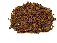 Плоды Облепихи крушиновидной 100 грамм (Hippophae rhamnoides)