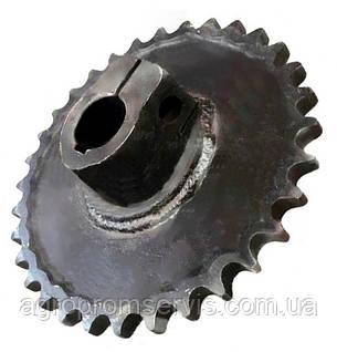 Зірка Z-32 t-19.05 валу шнека УПП-8.01.31.280, фото 2