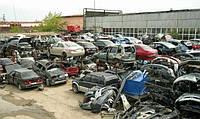 Разборка Toyota Camry 20 30 40 50 Avensis t25 t27 t22 Corolla 100 120 150 151 180 Тойота Камри Авенсис Королла