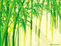 Полотенца с бамбуком