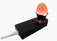 Овоскоп для проверки яиц ОВ1-60Д Сяйво (диодный)