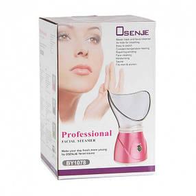 Сауна для лица Professional Facial Steamer BY 1078 Osenjie, фото 2