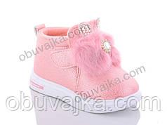 Демисезонная обувь оптом Ботинки от фирмы GFB для девочек оптом(22-27)