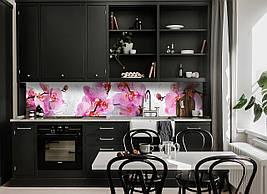 Кухонный фартук Орхидея Сакраменто (полноцветная фотопечать наклейка капли росы розовые орхидеи цветы)