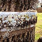 Клейкий пояс для деревьев 5 м Agromaxi, фото 4