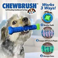 Зубная щетка игрушка для чистки зубов для собак Сhewbrush