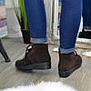 Черевики жіночі коричневі замшеві на шнурівці, фото 3