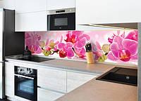 Квіти, квіткові принти (кухонні фартухи)