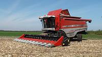 Dominoni жатка для збирання кукурудзи Dominoni S978B