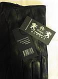 Кожаные женские перчатки, шерсть сетка (размеры 6,5-8,5), фото 3