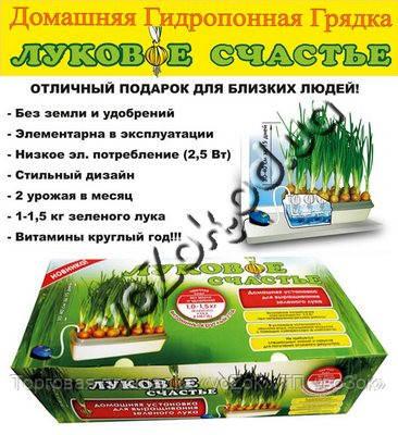 Проращиватель лука грядка домашняя гидропонная Луковое счастье