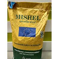 Гибрид подсолнечника Мишель под Евро Лайтинг (АльфаСідс Стандарт), европейские семена подсолнечника